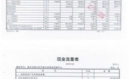 重庆市渝中区巴渝公益事业发展中心2015年度财务报表