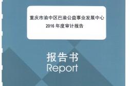 巴渝公益2016年度审计报告(全文)